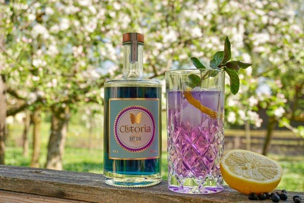 Gin-Tonic-mit-Clitoria